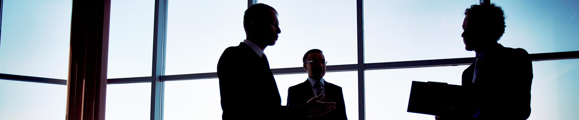 Consultoría en Seguros de Empresas
